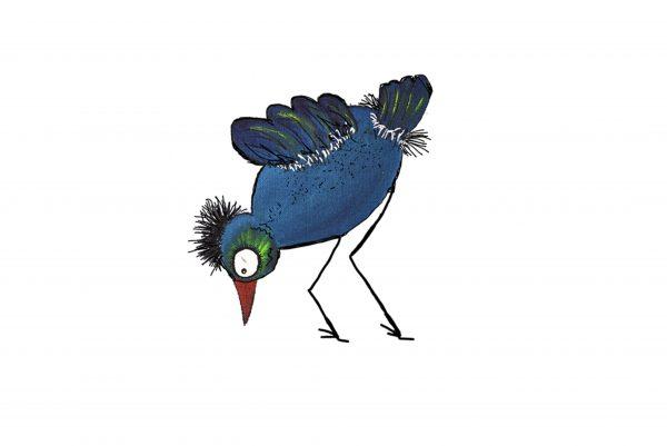 pájaro azul y verde